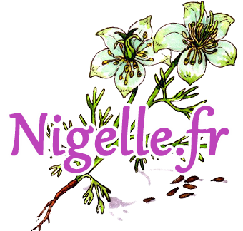 Nigelle.fr