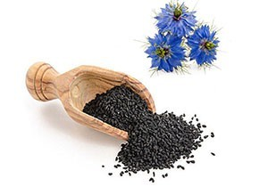 La graine de nigelle ou habba sawda ou cumin noir Nigelle.fr